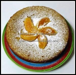 SCH bizcocho naranja